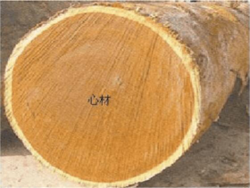 wood defect-heartwood
